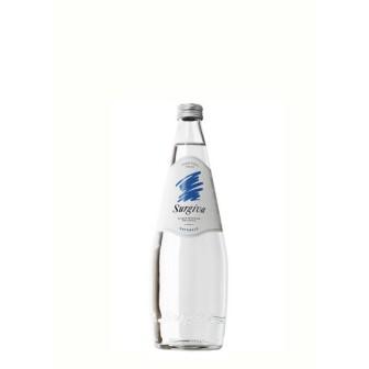 Surgiva Mineral Water (still) 1X250ml