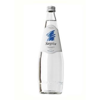 Surgiva Mineral Water (still) 1X750ml