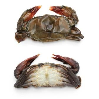 Soft Shell Crab (frozen) 1X12pcs