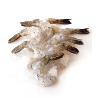 Shrimp Peeled Tail on 16-20 1x2kg