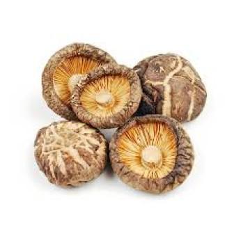 Shitake Mushroom 1X1lb
